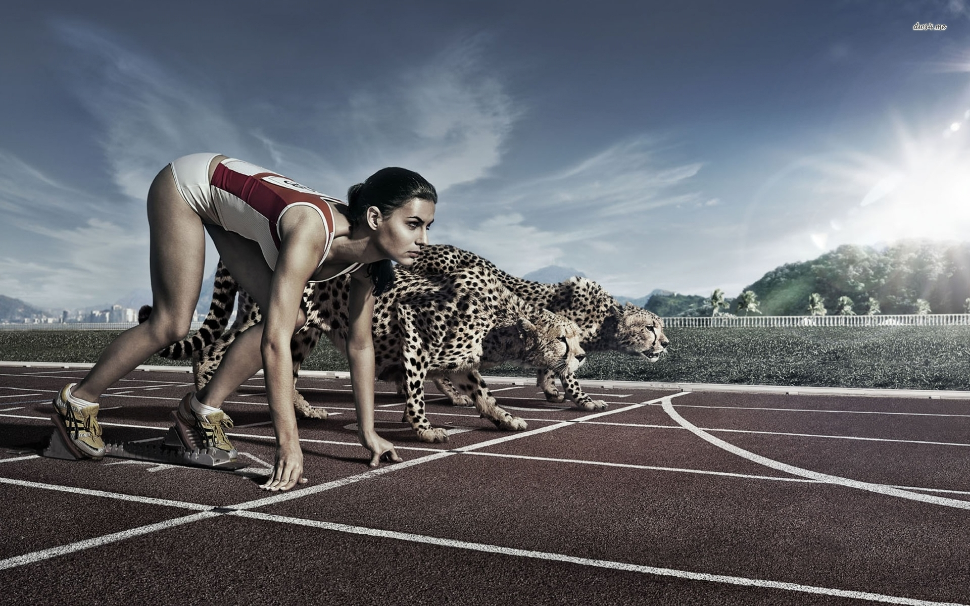 athlete-against-cheetah